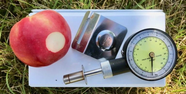 Penometer för mätning av fasthet hos äpple
