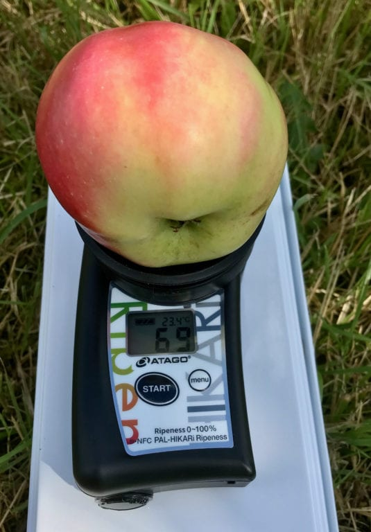 Mognadsmätare för mätning av mognadsgrad hos äpple. Foto: Kimmo Rumpunen