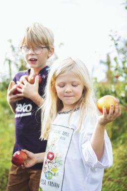 Framtidens Frukt 17 Foto Anki Blomqvist