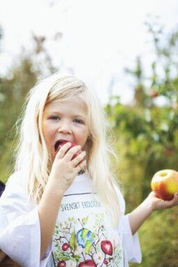 Framtidens Frukt 18 Foto Anki Blomqvist
